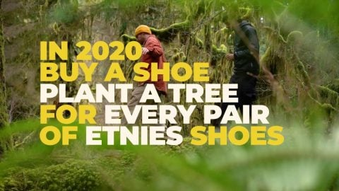 2 Million Planted Trees Since 2011 – Thank You | etnies