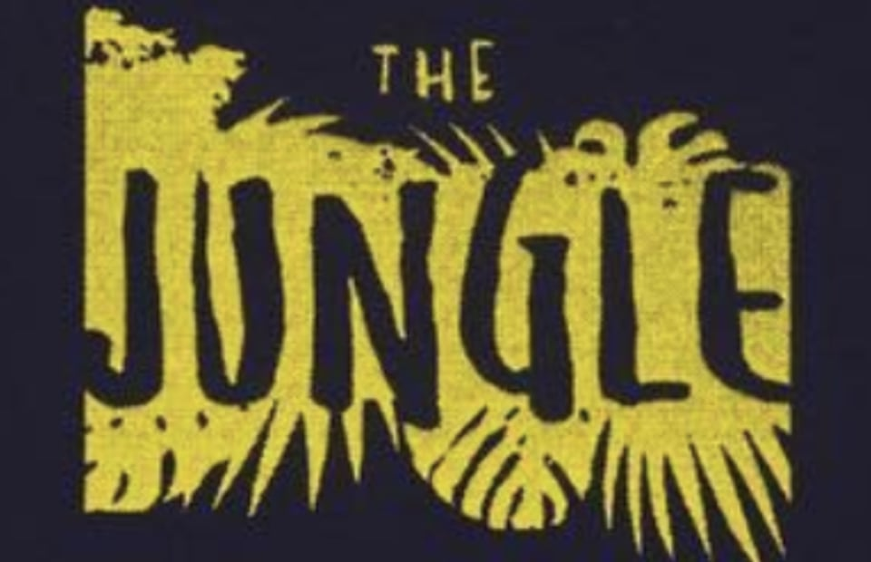 THE JUNGLE | The Skateboarder's Journal