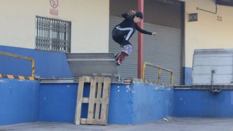 Andrea Benítez Dogway Part. Supported by adidas Skateboarding | DogwayMagazine