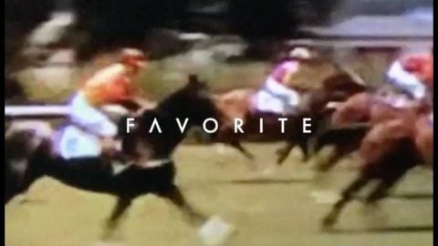 Favorite Jockey Club | Favorite Skateboard Company