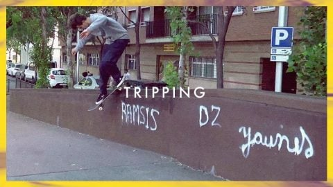 Favorite - Tripping | Favorite Skateboard Company