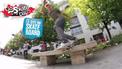 Go skateboarding Day Paris 2015 - LeSiteDuSkateboard - LeSiteDuSkateboard Videos