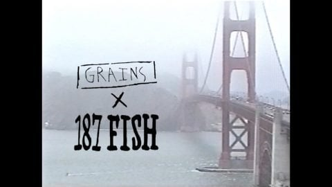 GRAINS X 187 FISH in SF | kevin delgrosso