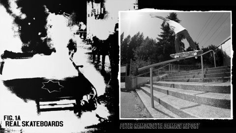 Peter Ramondetta : Damage Report - REAL Skateboards